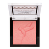 Color Icon Baked Blush- Don't Flutter Yourself