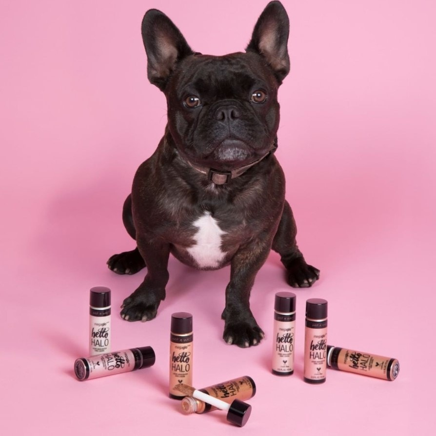 French Bulldog sitting with cruelty-free liquid highlighter